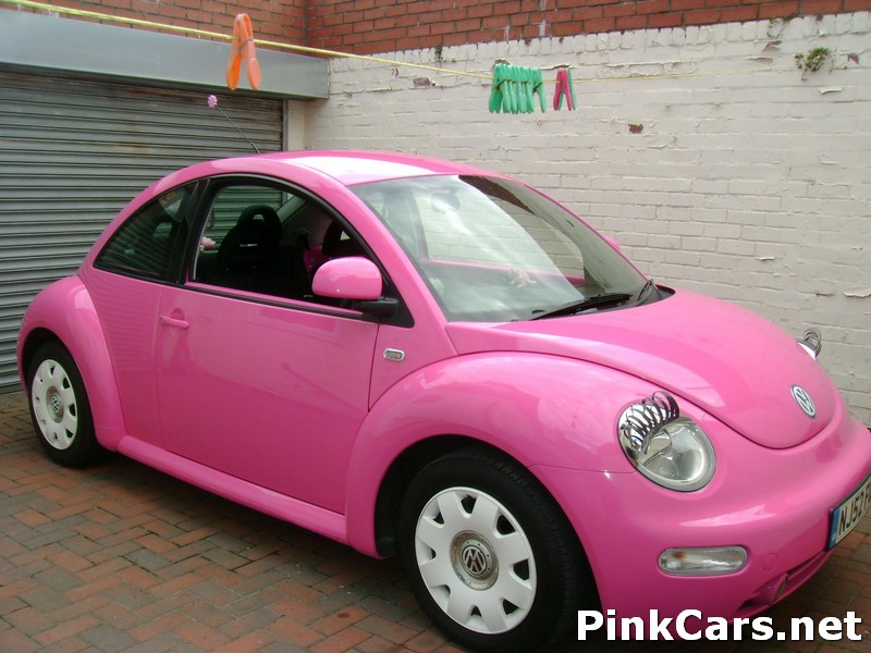 Herbie The Pink Beetle Michelle Fisher